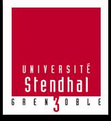 ICM Grenobl